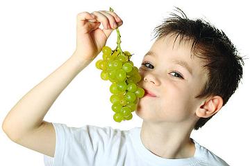 حفنةٌ من العنب فقط!!