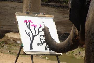 الفيل يرسم!!