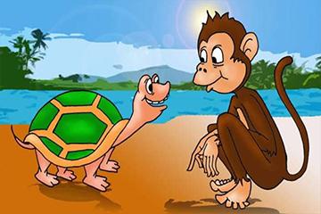 القرد و السلحفاة
